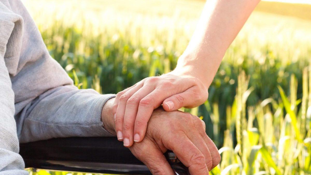 Gentleness: Missing in Action?